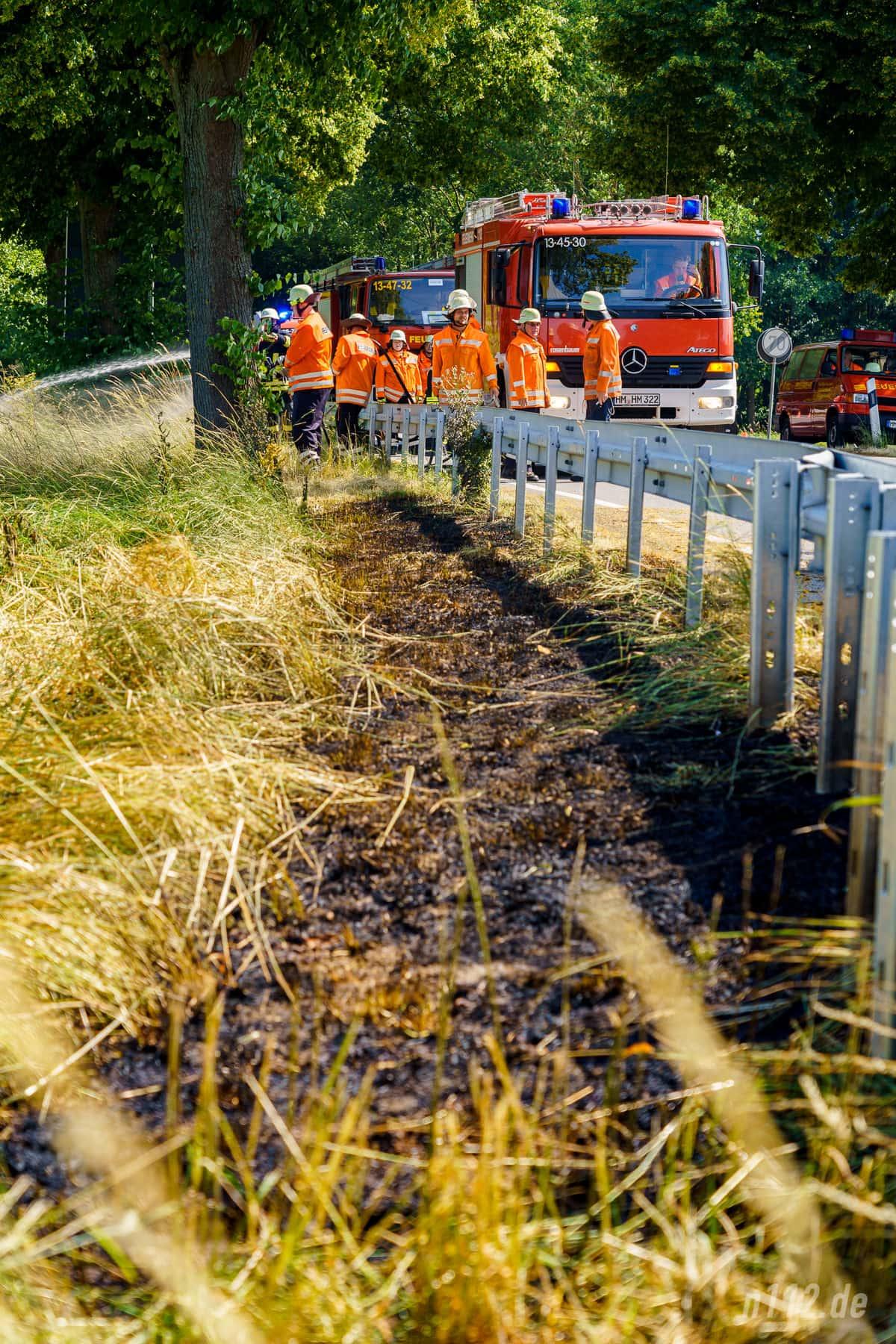 25-30 Meter Grünstreifen waren in Brand geraten (Foto: n112.de/Stefanm Simonsen)